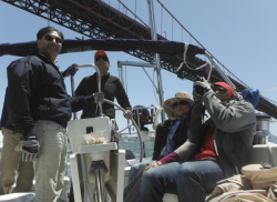 sailing tours san francisco bay under Golden Gate